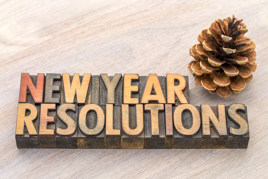 New Year resolutions word abstract in vintage letterpress wood type blocks with a pine cone