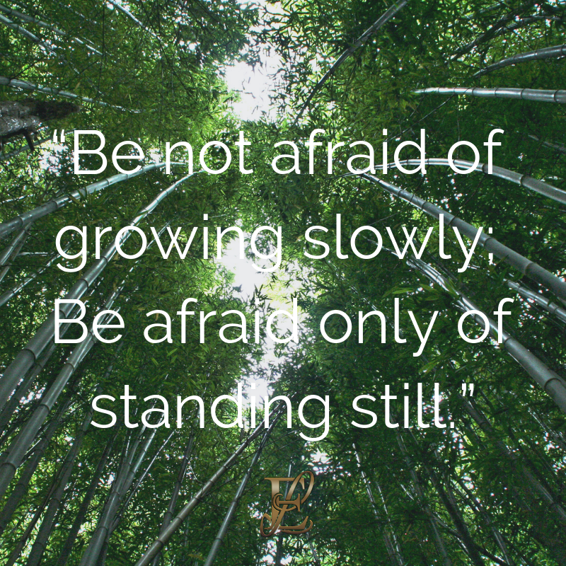 Esmie Lawrence, stress management, managing stress, podcast, esmie lawrence, freedom, negativity, 10 famous quotes, quotes, quotation, chinese new year, year of the pig, pig 2019, good fortune, chinese proverbs, e not afraid of growing slowly; Be afraid only of standing still.